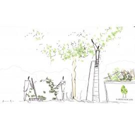GardenEscape Pflege-Gold